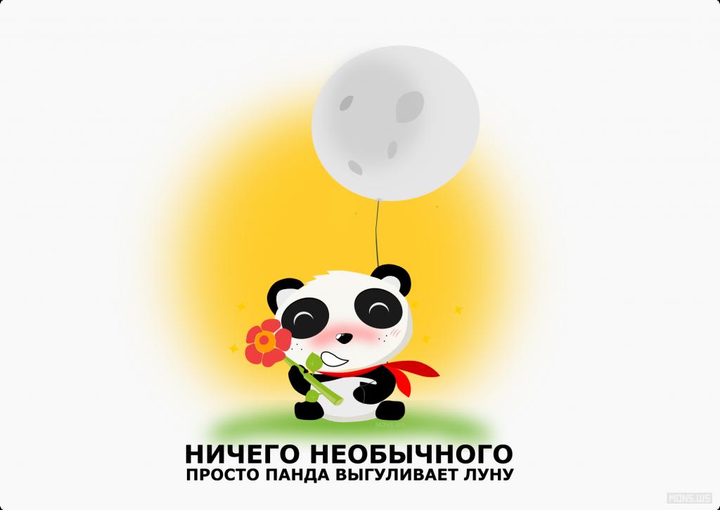 панда выгуливает луну